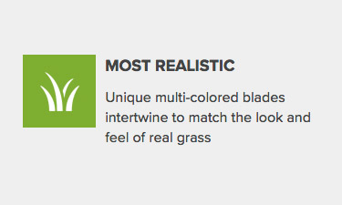 Where to Find Artificial Grass that Looks and Feels Like Real Grass
