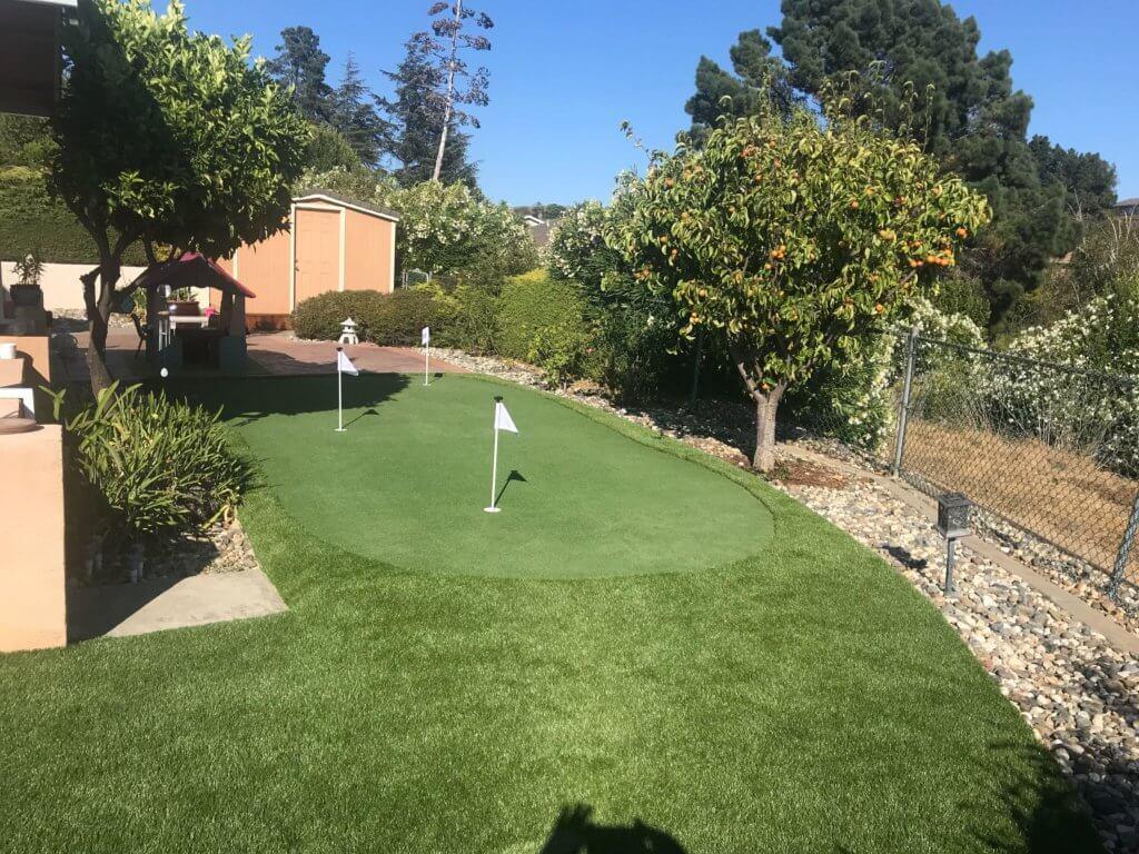 backyard putting green turf